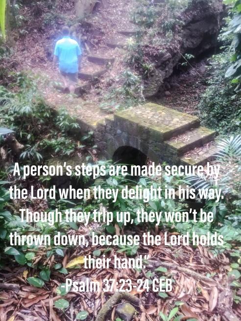 Psalm 23:23-24